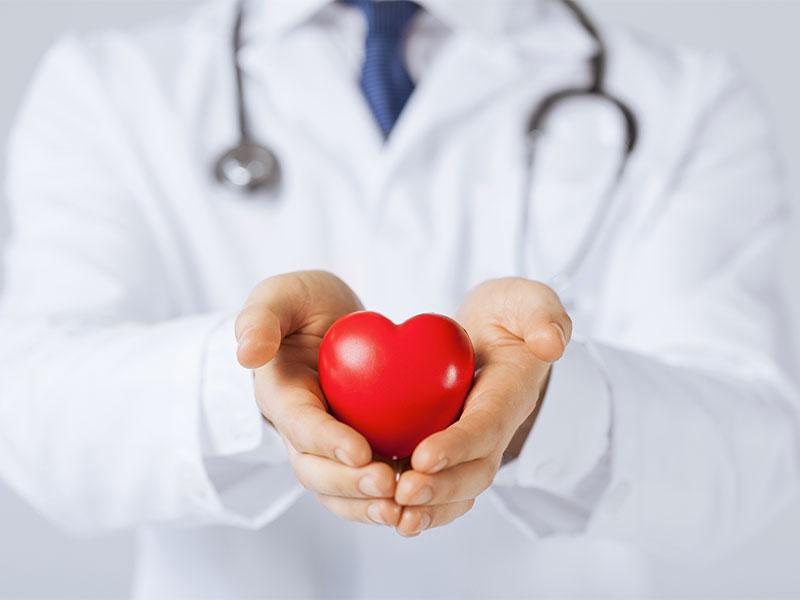 Cuore e malattie cardiovascolari, l